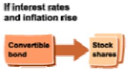 ibborson_convertible_bonds
