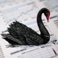 black_swan_1